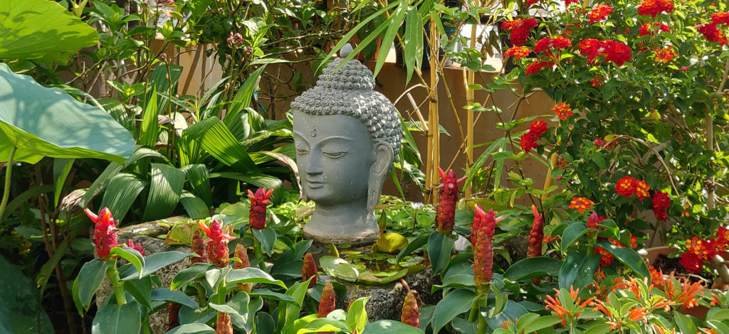 Jayashree Rajan's garden apartment tour on The Keybunch: buddha statue surrounded by plants