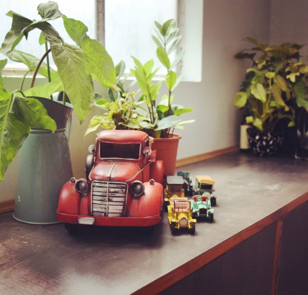 Home decor Tour by Ankita and Sitanshu's in Lucknow - vintage miniature toy cars with green plants