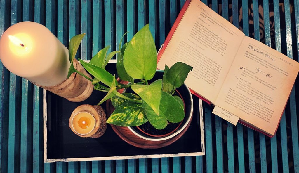 Home style Tour with Rajni in Hyderabad: the collection of green plants, candle stands and book