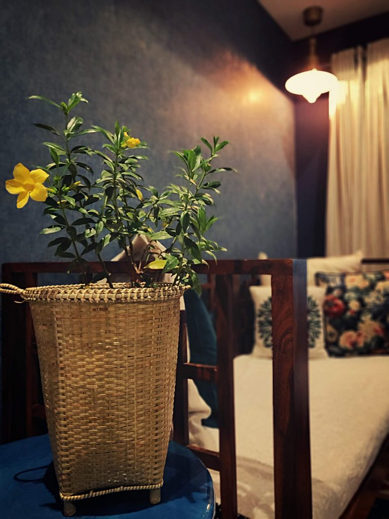 Home style Tour with Rajni in Hyderabad: the living room is filled with basket plant