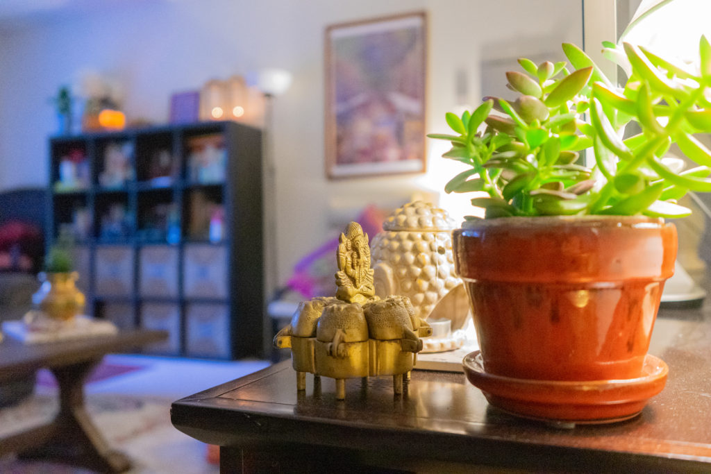 Affinity for antiques and collection of vintage | Home tour of Rushika & Dipkal's - the collection of succulent plants and buddha at the living room
