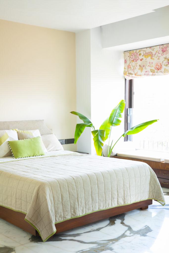 Home Renovation Story | Mohamedi & Durriya Sham's Aesthetic Mumbai Home - Travelers Palm at the corner of the bedroom