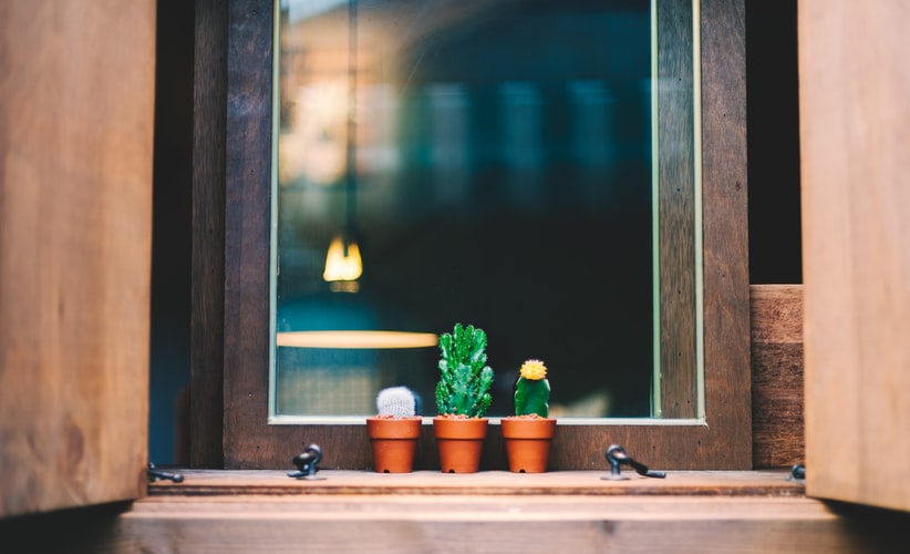 Place plants around the house to feel connected to the outside world | Nitido interior designers | theKeybunch decor