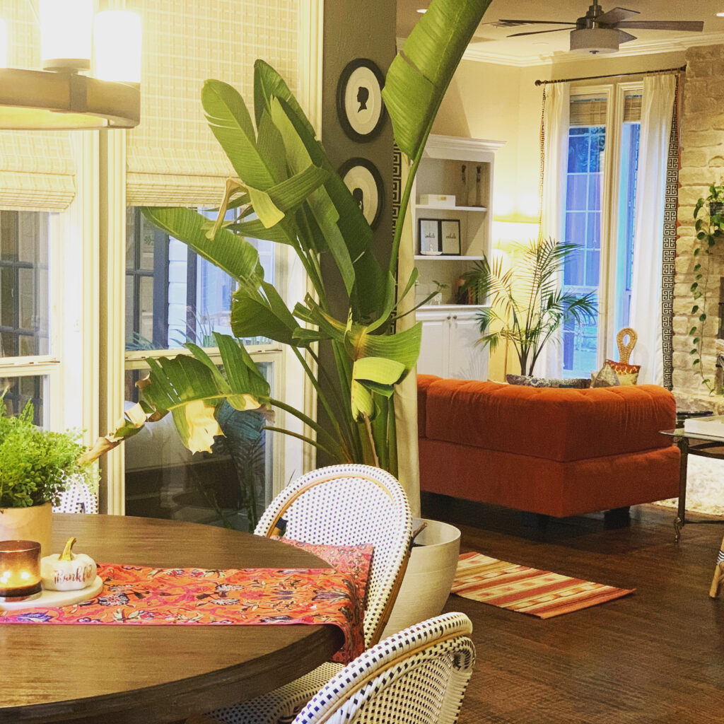 The breakfast nook with the stunning bird of paradise that is brought in from the backyard porch | Ruma's Indian Home in Texas | theKeybunch decor blog