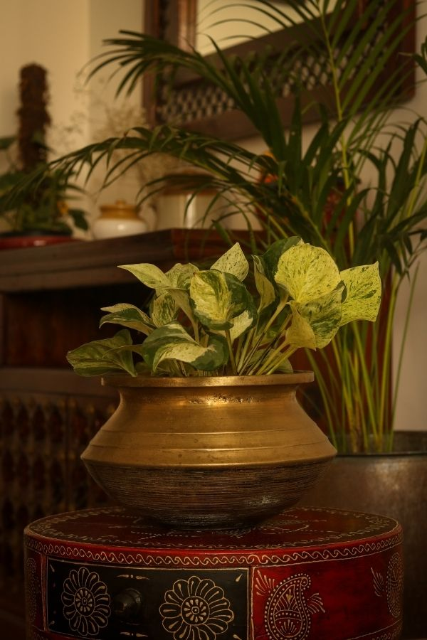 Vintage brass planter decorated in living room | Home Tour: A beautiful Antique Modern home in Bangalore