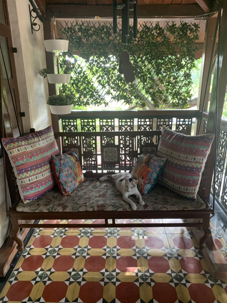 Villa Rashmi - A Heritage Gem in Mumbai   The colorful cushion cover and cute cat on antique chair at the verandah   TheKeybunch decor blog