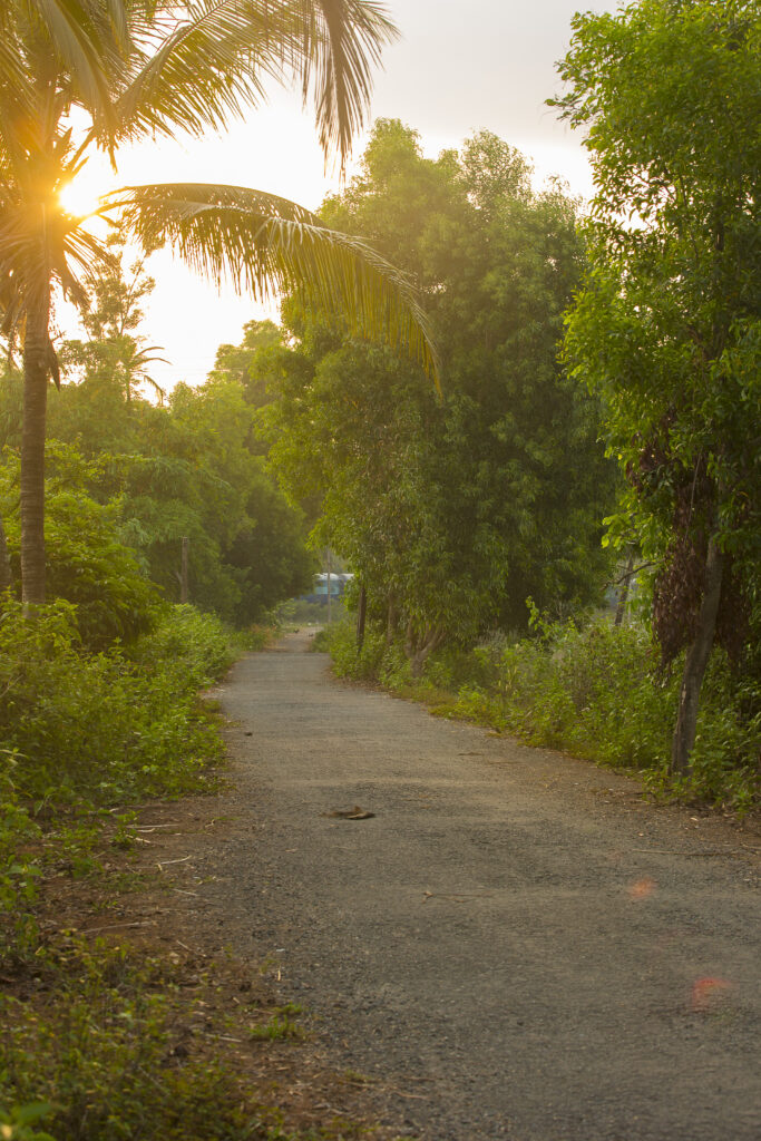Betalbatim in Goa, India   A quiet road leading to the beach   TheKeybunch decor blog