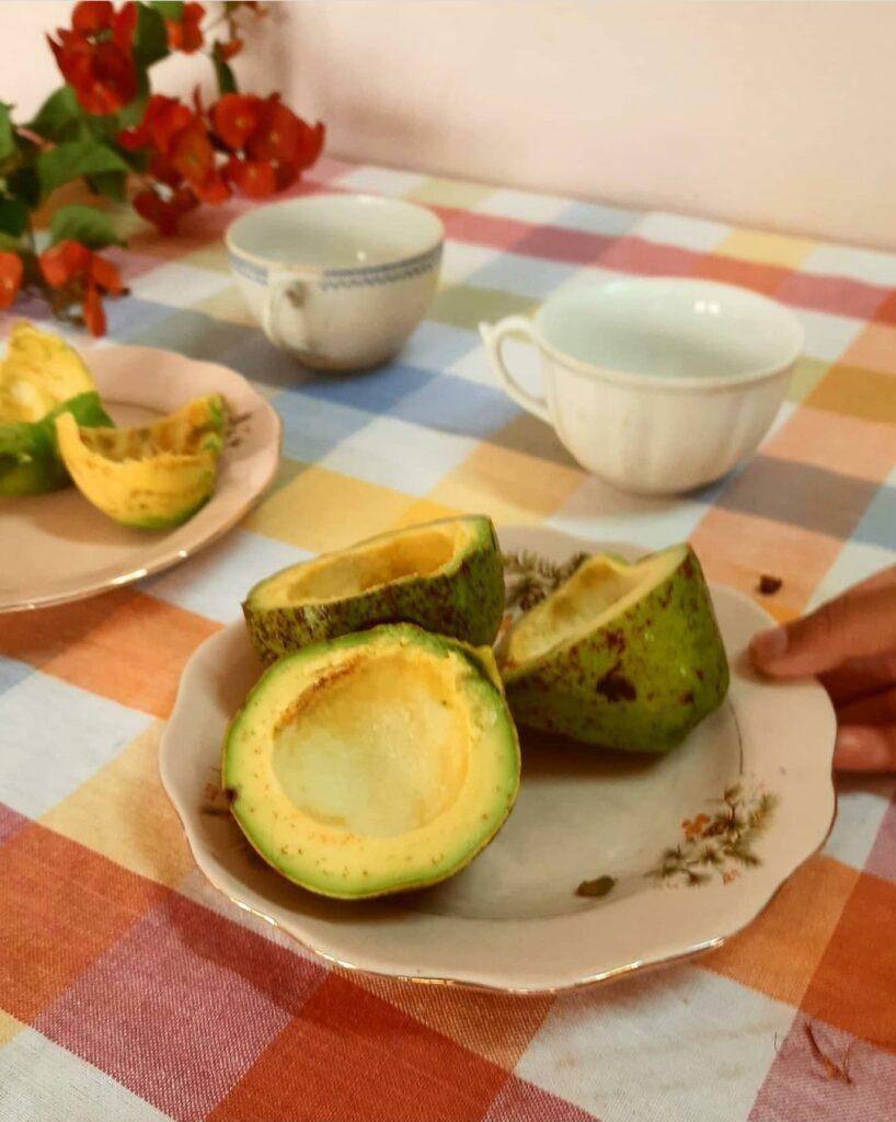 Fall Decor in India - Autumn Season | Avocado on vintage plate
