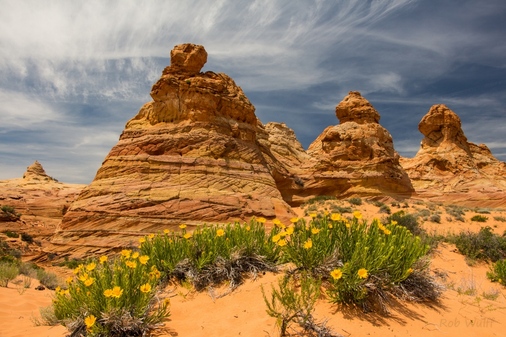 a late spring Coyote Buttes South tour