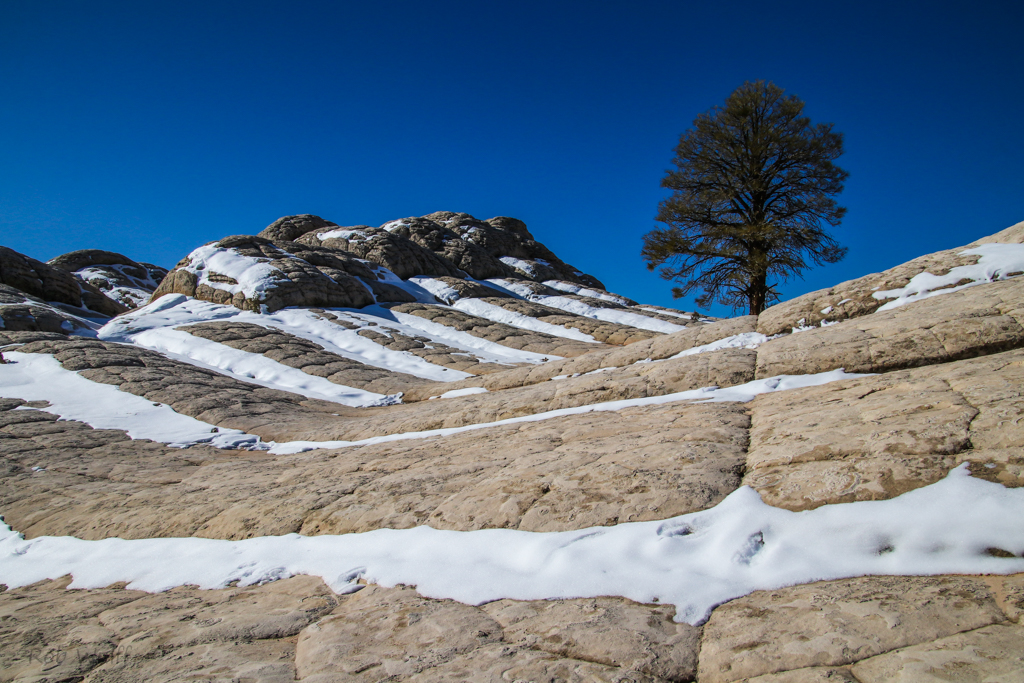 a touch of snow at White Pocket