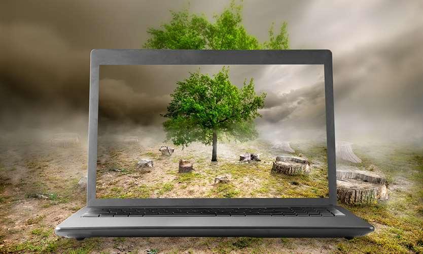 Emerging risks cloud the horizon