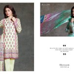 Eid Ul Azha Kurti Tights By Sapphire 2015-16 10