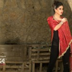 Winter Shawls Change Collection 2016  7