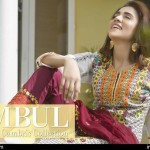 Cambric Embroidered Spring Collection Rujhan Fabrics 2016 17