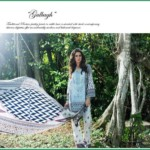 Shehla Chatoor Luxury Lawn Collection Summer 16 7