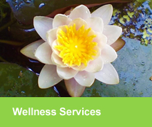 wellness_services