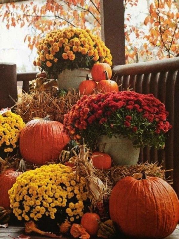 Fall Outdoor Vignette