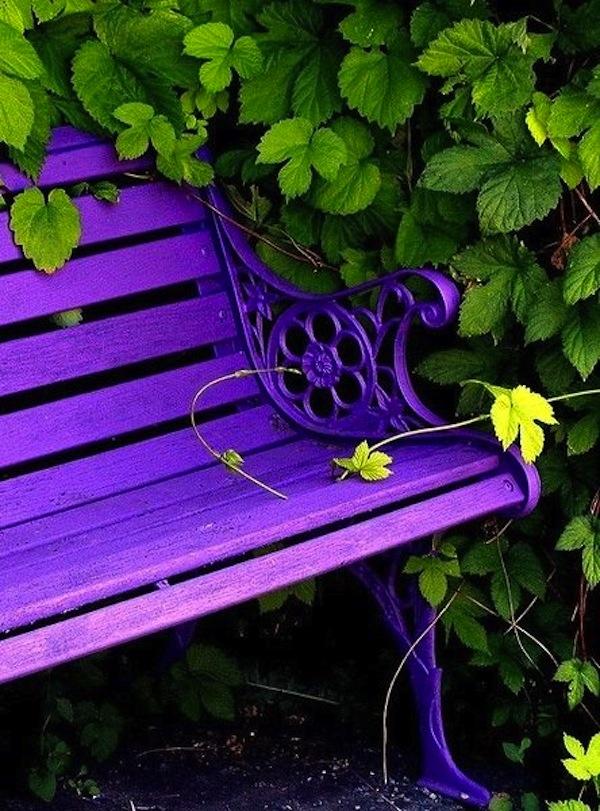 Purple Outdoor Bench