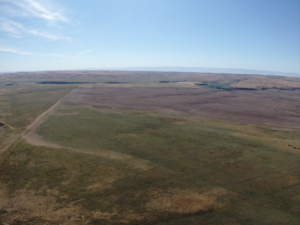 drone image of crp grass and wheat