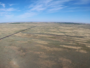 drone image of crp grass