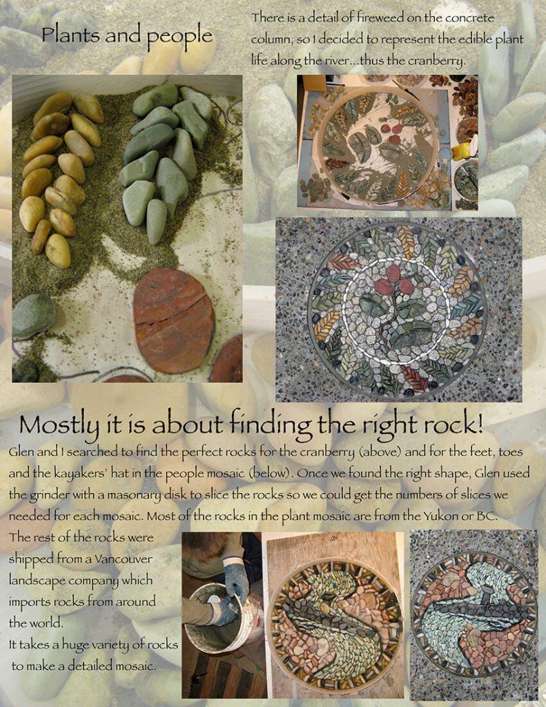 page 8-cranberry&plants