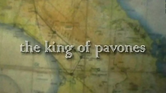 THE KING OF PAVONES – MOVIE TRAILER