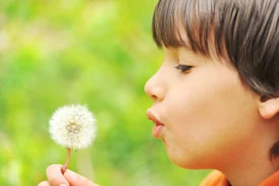 dandelion child, orchid child, makrosbarn, orkidbarn