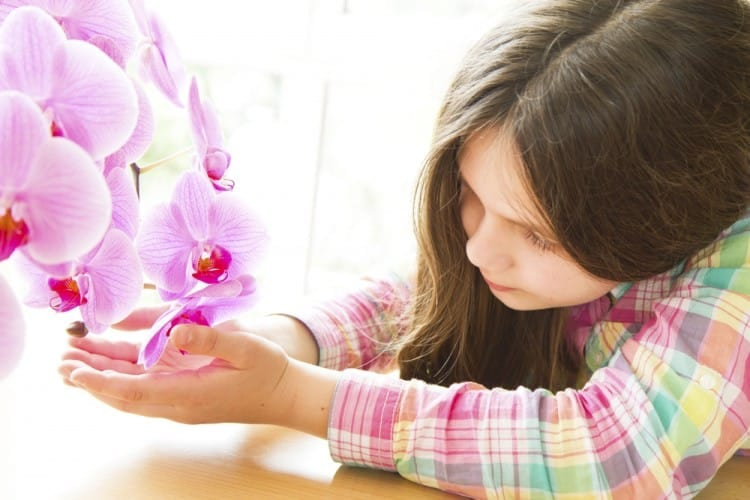Orchid Child: Do You Have One?