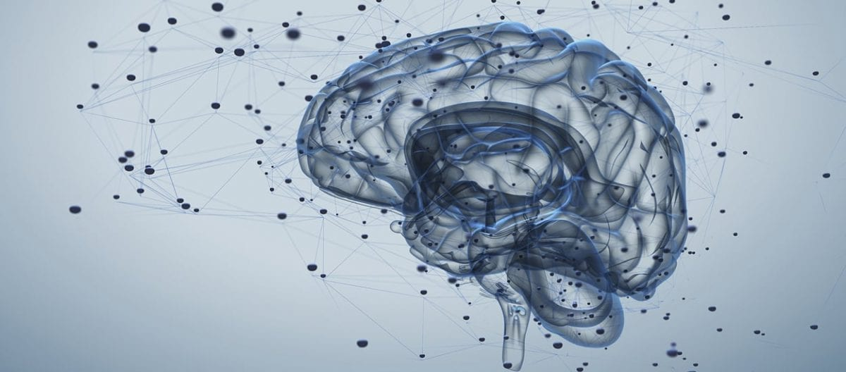 Welcome to The Learning Mind: How the Brain Affects Your Classroom