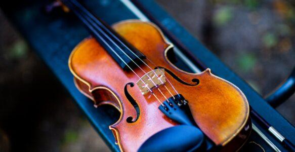 The Violin Plot