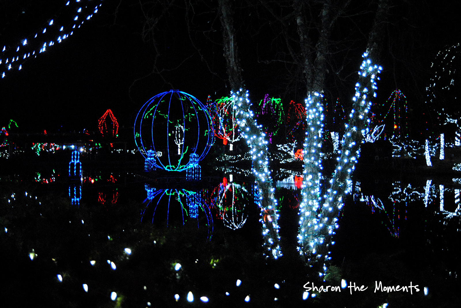 Family Fun at the Columbus Zoo for Winter Wildlights\Sharon the Moments blog