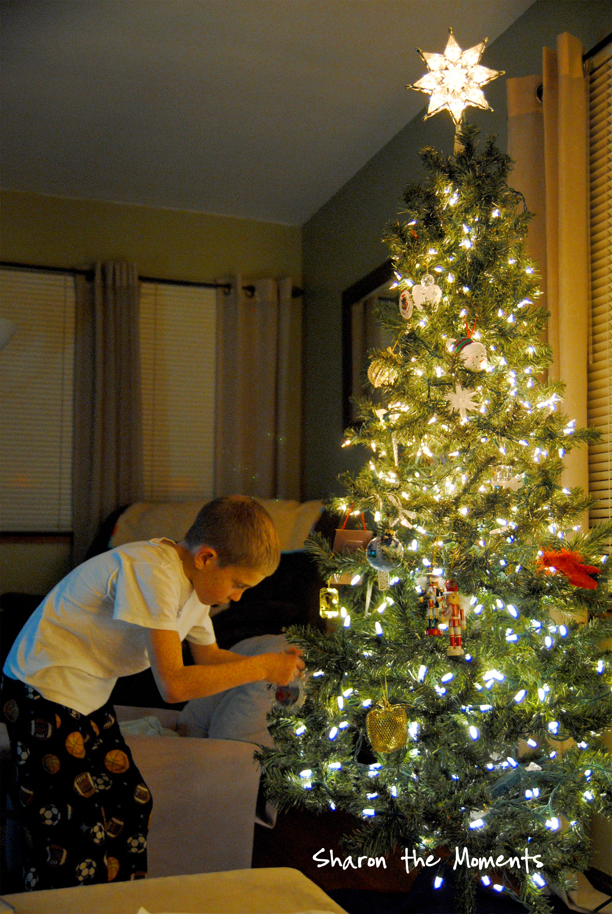 Decorated Christmas Tree|Sharon the Moments blog