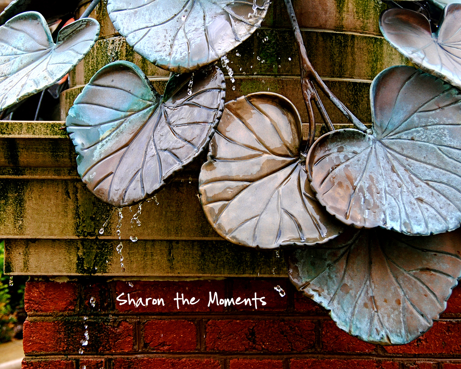 Favorite Photo Friday Downtown Columbus Fountain|Sharon the Moments blog