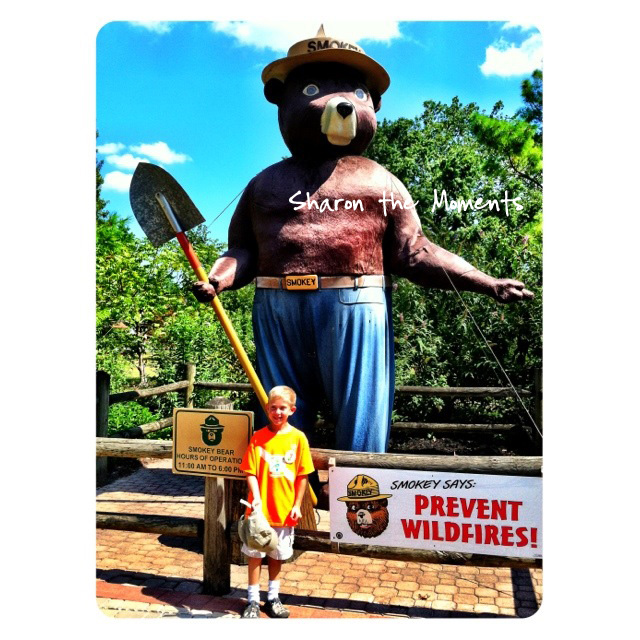 Ohio State Fair Smokey the Bear in the Ohio Dept of Natural Resources area Sharon the Moments blog
