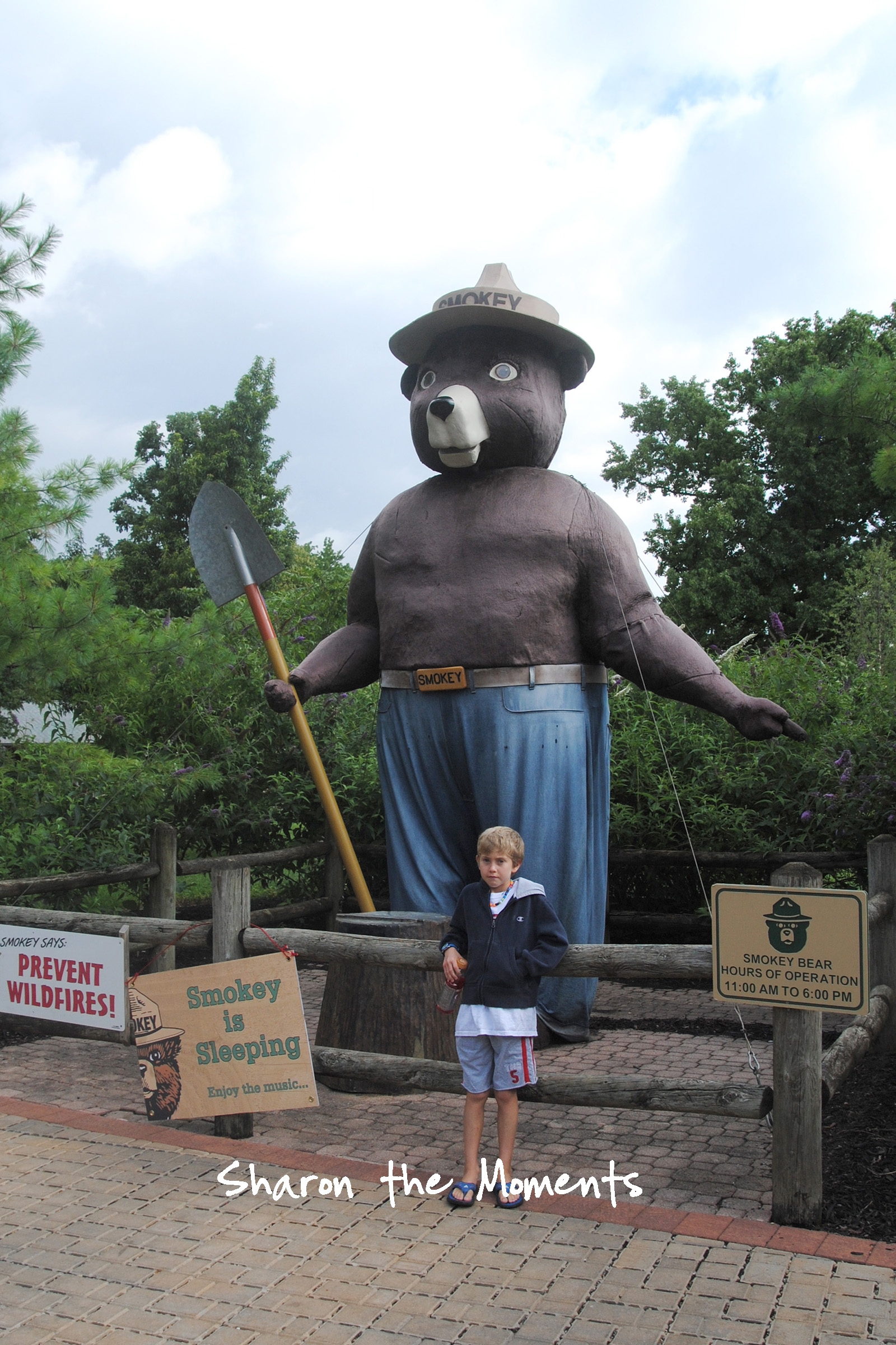 Ohio State Fair Smokey the Bear Fond Memories|Sharon the Moments blog