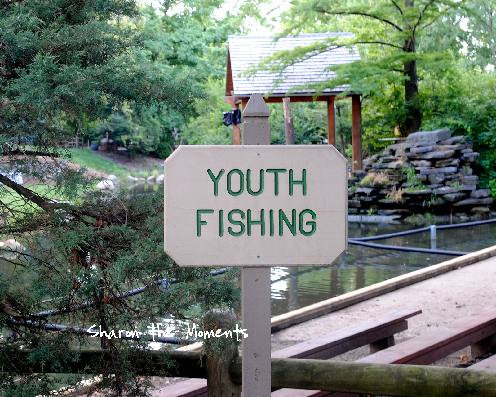 Ohio State Fair Dept of Natural Resources Youth Fishing Fond Memories|Sharon the Moments blog