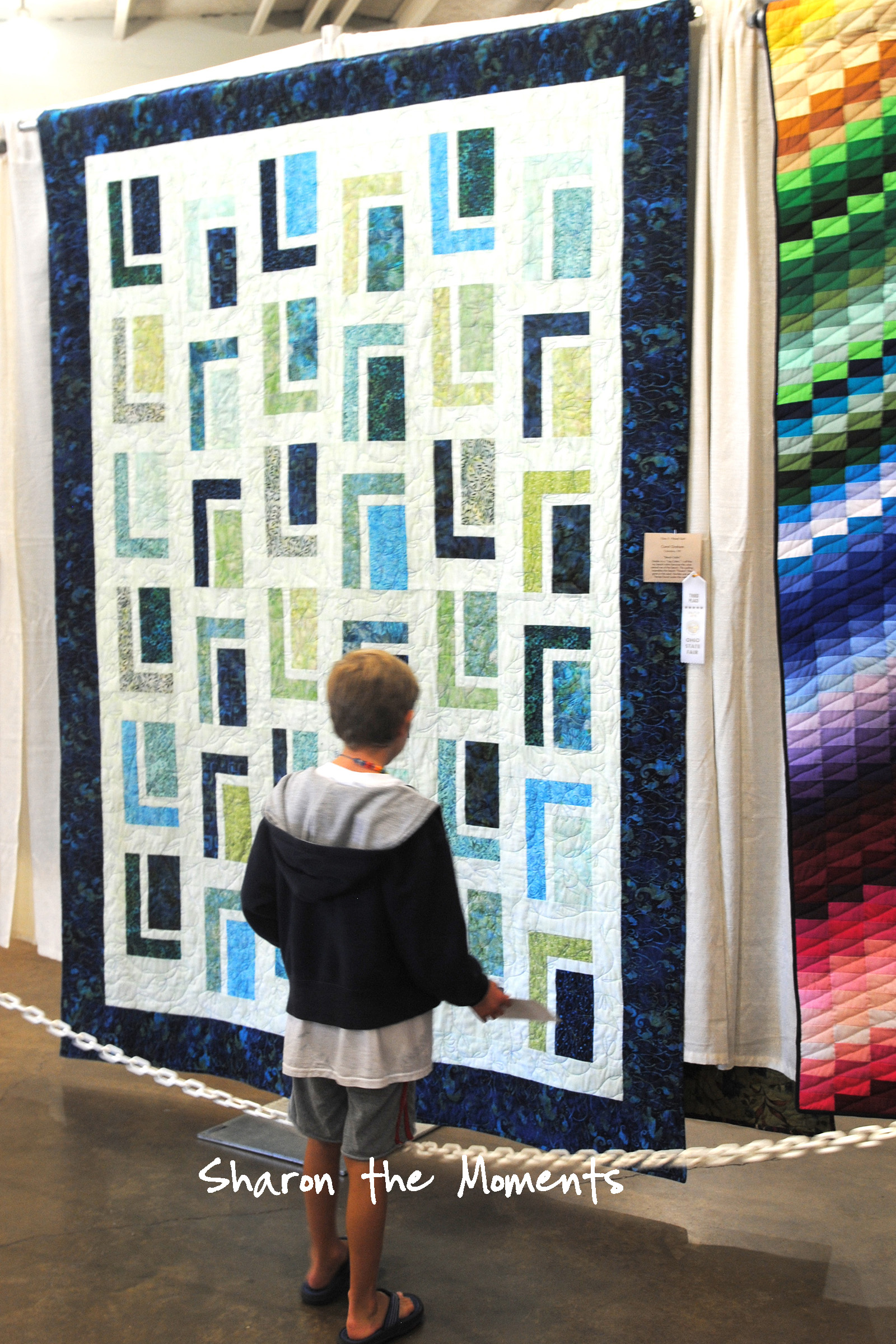 Ohio State Fair Creative Arts Quilt Fond Memories|Sharon the Moments blog