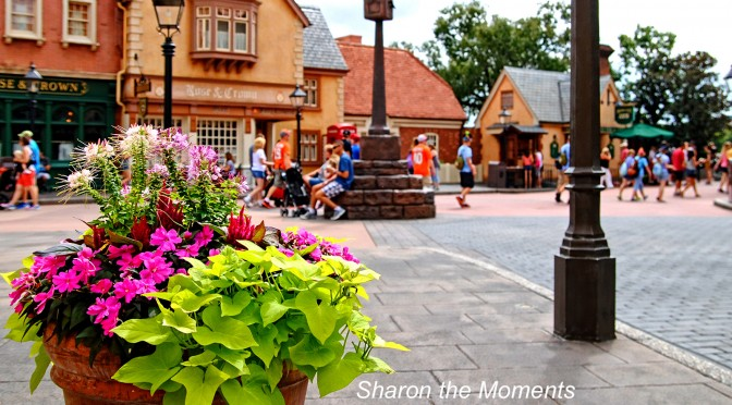 Our October Visit to Walt Disney World Epcot Phineas and Ferb|Sharon the Moments Blog