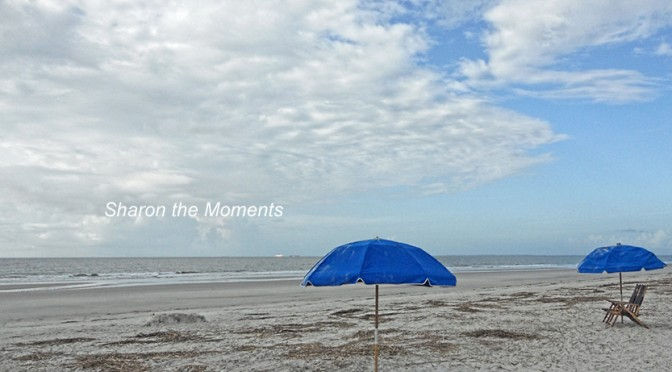 Hilton Head Island|Sharon the Moments Blog
