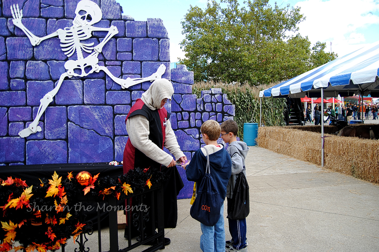 Fright or Fear or Family Fun... Last HalloWeekend at Cedar Point!|Sharon the Moments Blog