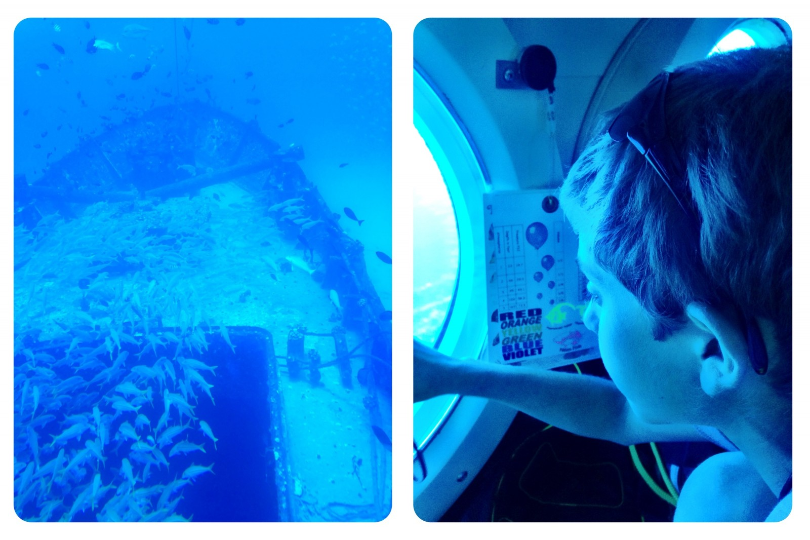 Experience Hawaiian Sea Life Without Getting Wet in an Atlantis Sub| Sharon the Moments Blog