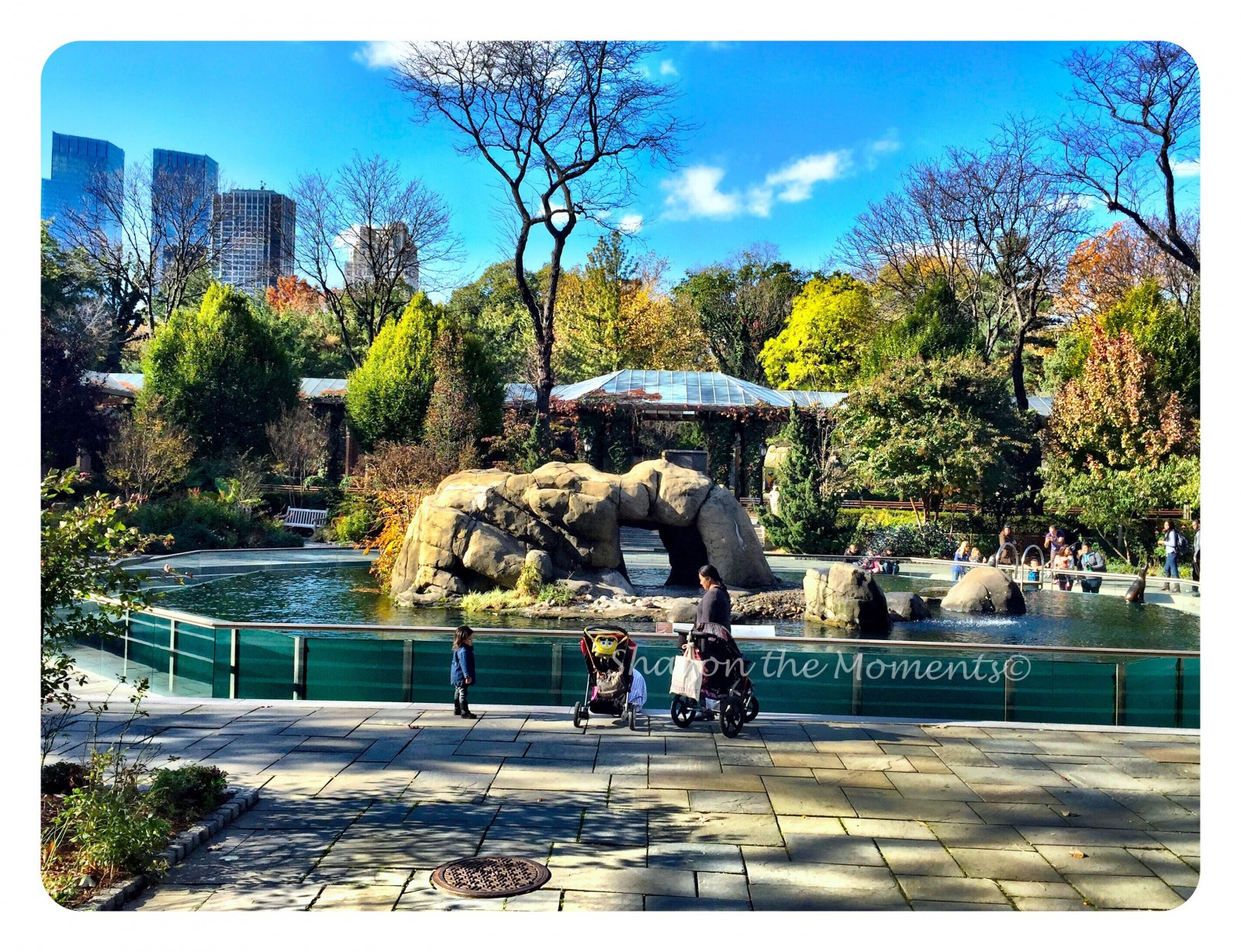Central Park in New York City Hidden Gem| Sharon the Moments Blog