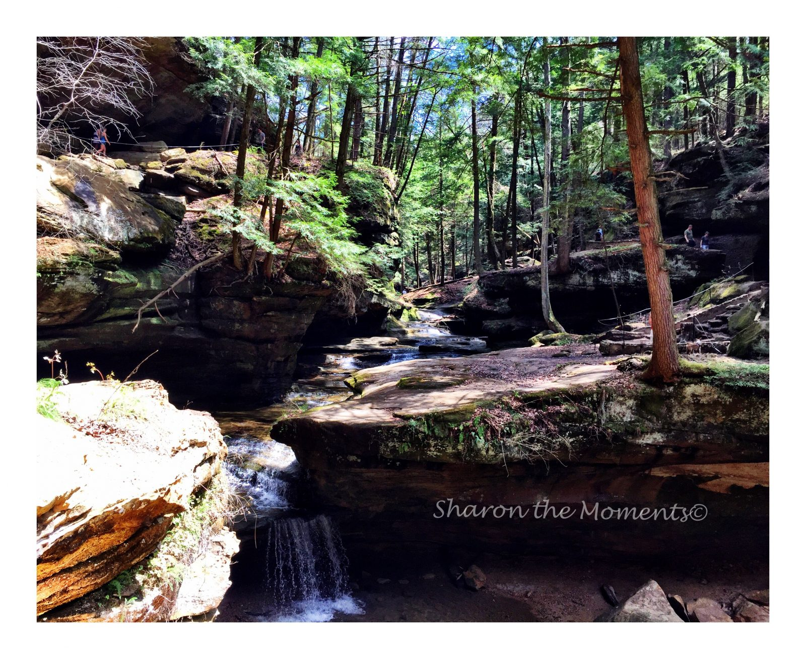 Old Man's Cave in Hocking Hills State Park | Sharon the Moments