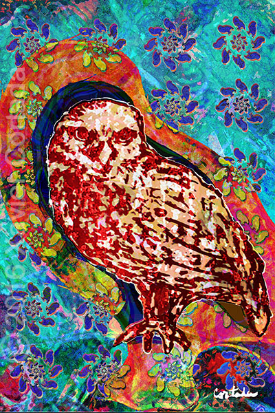 "Xavier Cortada, ""(Florida is…) Burrowing Owls, archival ink on aluminum, 60\″ x 40\"", 2016"