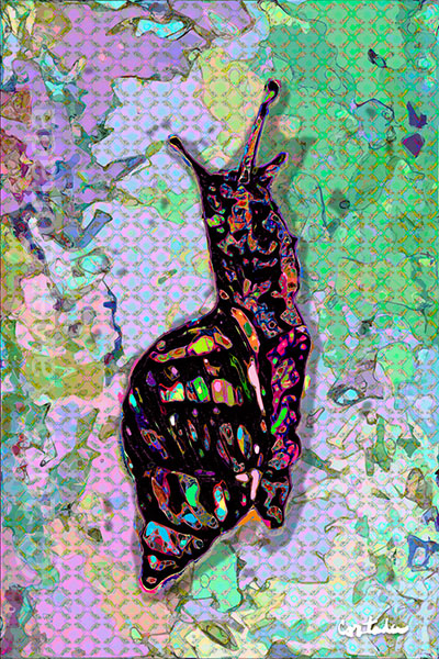 "Xavier Cortada, \""(Florida is…) Stock Island Tree Snails,\"" archival ink on aluminum, 60\″ x 40\″, 2015."