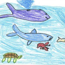 FLORIDA IS… marine life