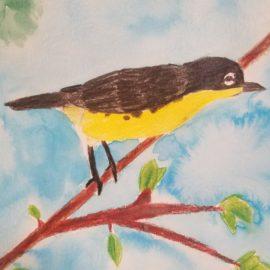 Florida is the Kirtland's Warbler