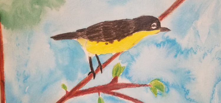 Florida is the Kirtland's Warbler