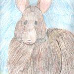 Lower Key Rabbit 001