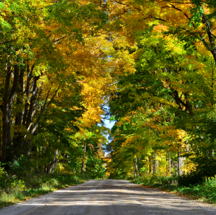 10 Fall Things To Do in Ontario